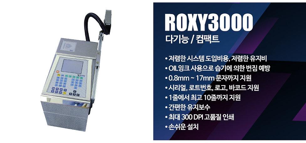 ROXY3000_문구.jpg