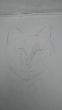 Essai chat