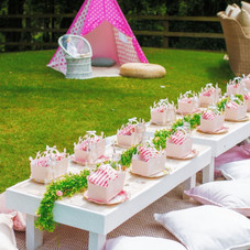 Kids luxe picnic table princess party