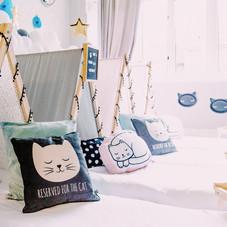 Sleepover party cat theme