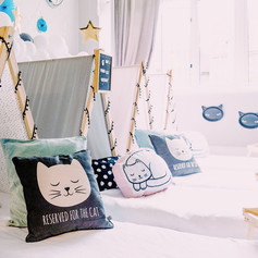 Sleepover party cat theme