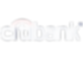 citibank_logo_180315 copy.png