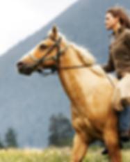 Frau auf galoppierenden Pferd