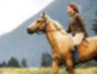 PEMF benefits for horses
