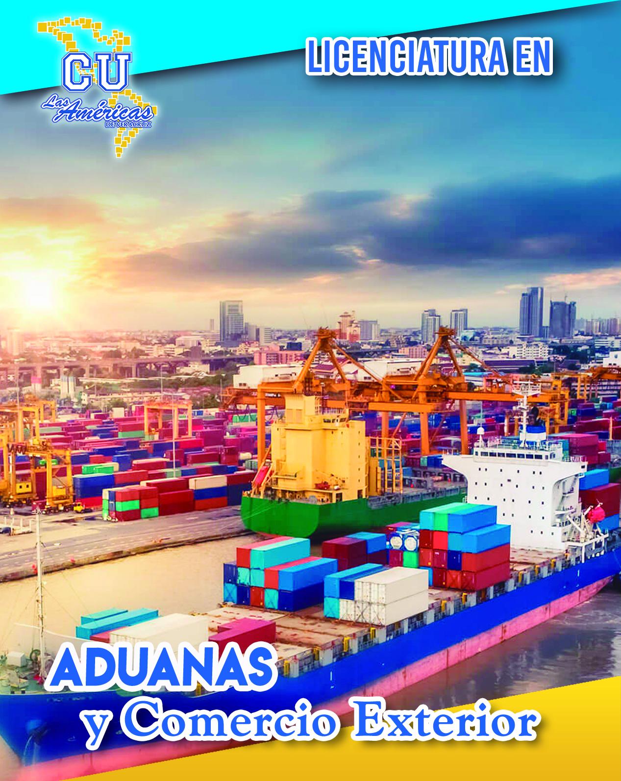aduanas web