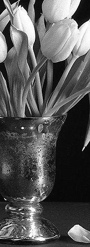 Monochrom.jpg