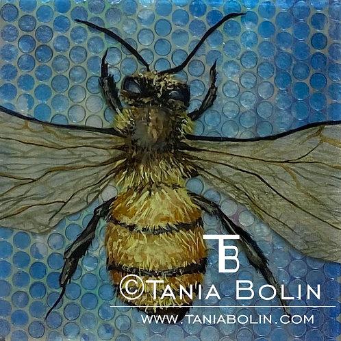 Bee-Lightful