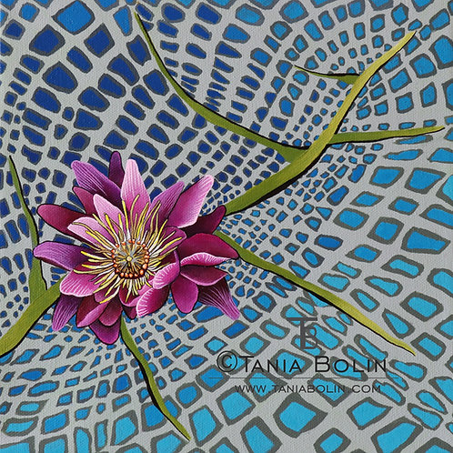 """Limited Edition Print """"Lily Pad"""""""