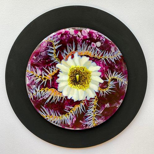 Flor De Saguaro