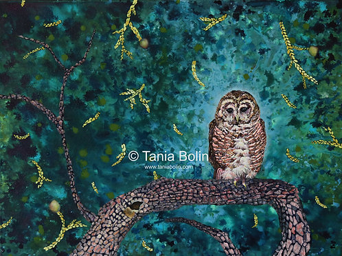 Limited Edition Print of 'Owl Spotting' - Matted