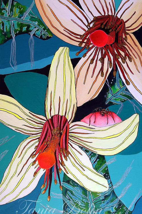 Limited Edition Print 'Flor de araña' - Matted