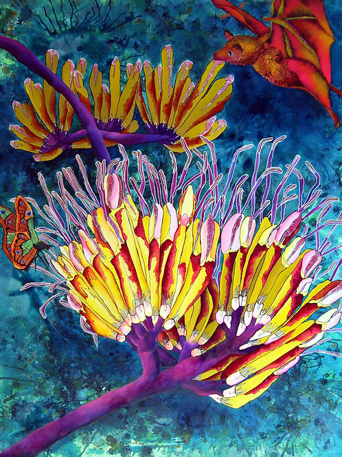 Limited Edition Print 'Inflorescense de Agave' - Matted