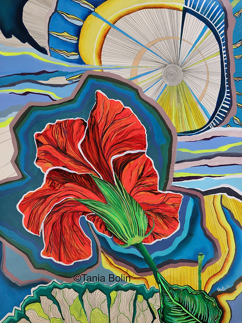 Limited Edition Print 'Hibiscus I' - Matted