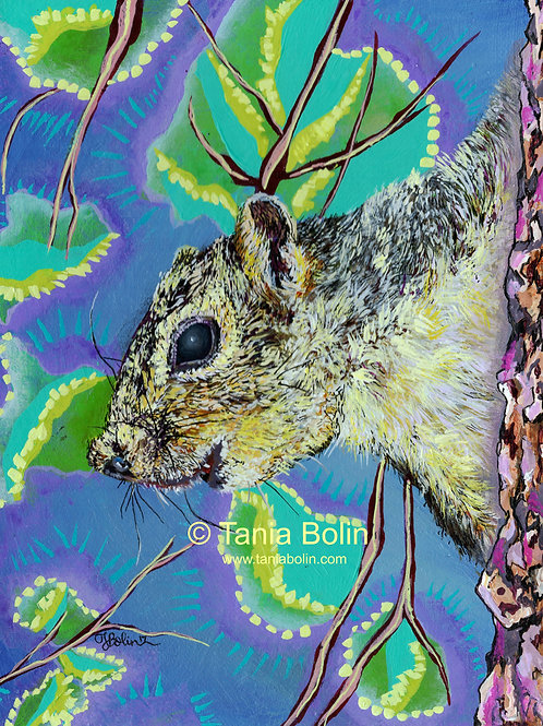 Limited Edition Print 'Squirrel!'