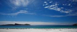 New Island Beach
