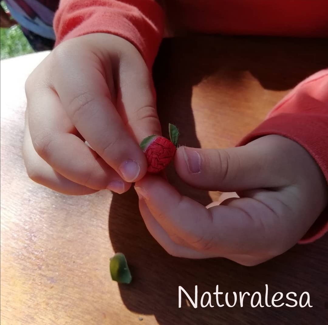 Naturalesa