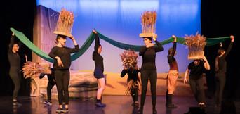 Grasslands Dance