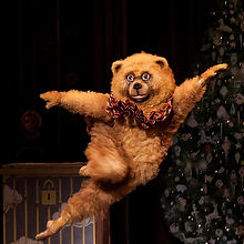 Boston-Nutcracker-bear.jpg