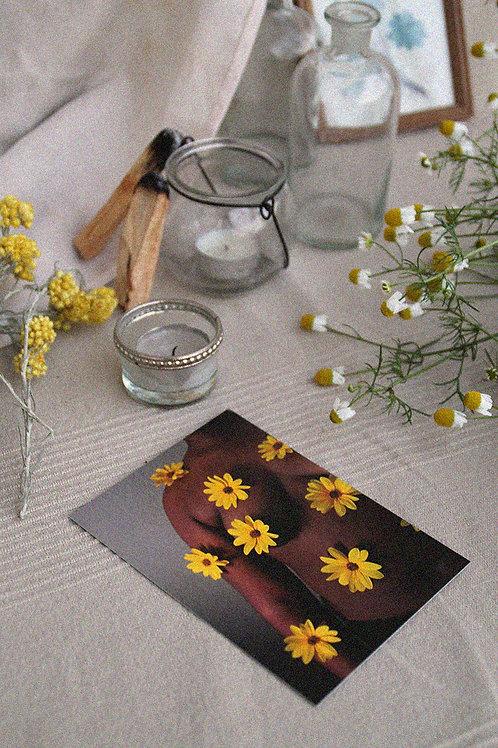 Postal Flowers