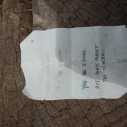 Tree stump note