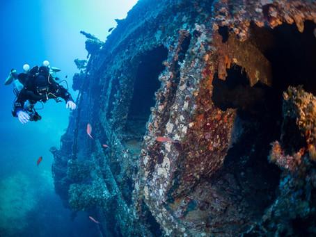 Un'immersione al Relitto del Paguro: il paradiso dei sub nel cuore del Mare Adriatico