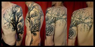 """GRAPHIC TREE OF LIFE"""