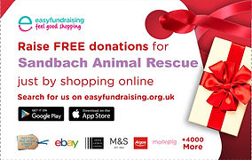 easyfundraising-christmas-handout-cards.
