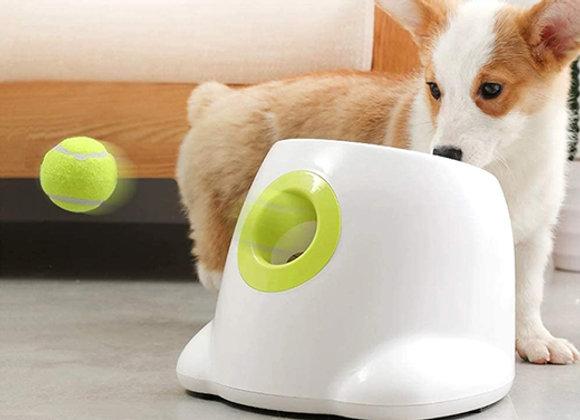 Lanzador de pelotas interactivo - Mini Hyper Fetch