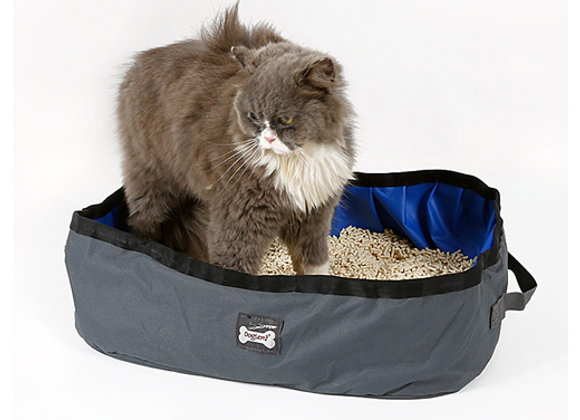 Baño sanitario para gatos