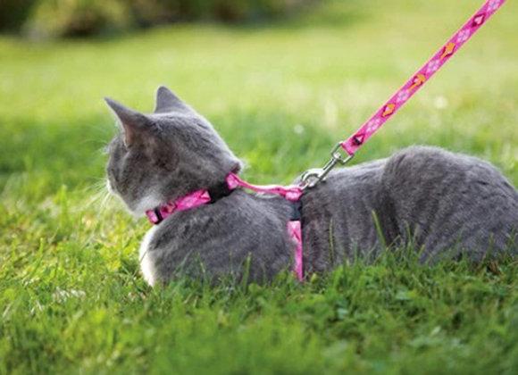 Pretal con correa para gatos