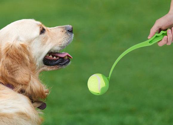 Lanza pelota