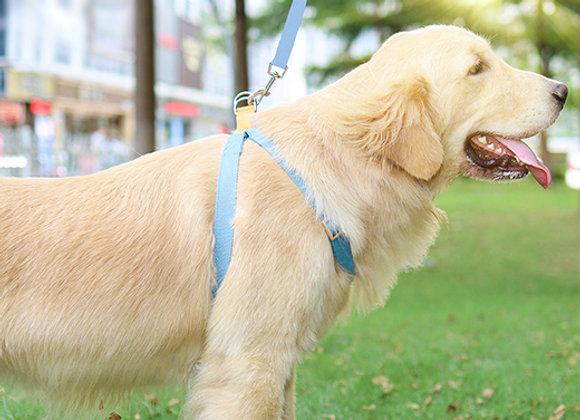 Pretal combinado para perros