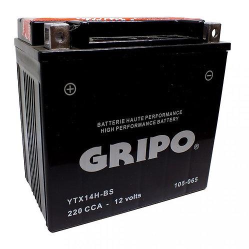 Batterie MF (sans entretien) YTX14H-BS GRIPO