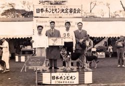 1964-日本チャンピオン