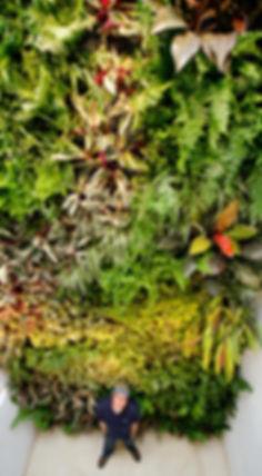 Jardín Vertical, Muro Verde, Muro Vivo, Green Wall, Living Wall, Jardines verticales, muros verdes, fachada vegetal