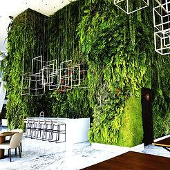 Jardines Verticales, Muros Verdes, Fachada Vegetal, México, Distrito Federal, Ecoyaab, Jardín Vertical, Green Wall, Muro Vivo, Azotea Verde, Techo Verde