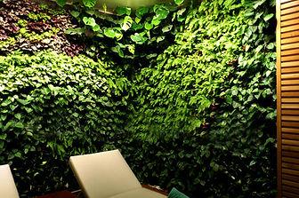 Jardin Vertical, Muro Verde, Green Wall, Paisajismo Urbano Mexico, Ecosistema Vertical, Muro Vivo,