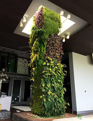 thumb-jardines-verticales-morelia-noviem