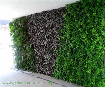 thumb-muros-verdes-morelia-11.jpg