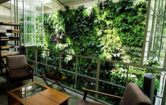 Jardin Vertical Muro Verde.jpg