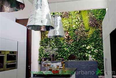 thumb-jardines-verticales-mexico-morelia