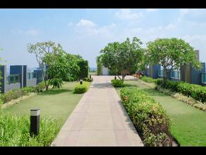 Las Azoteas Verdes en el entorno Urbano