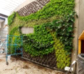 Jardines Verticales, Jardin Vertical, Muro Verde, Muro Vivo, Living Wall, Green Wall