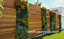 Jardines Verticales, Muros Verdes, Fachada Vegetal, México, Distrito Federal, Ecoyaab, Jardín Vertical, Green Wall, Muro Vivo,