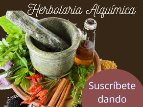 Curso Gratuito de Herbolaria Alquímica