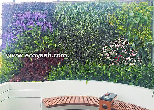 Jardin Vertical, Jardines Verticales, Muro Verde, Muros Verdes, Fachada Vegetal, Arquitectura Sustentable, Arquitectura Bioclimática, Muro Vivo, Ecoyaab, Ecosistema Vertical, Paisajismo Urbano, Muros Vivos