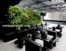 Jardin Vertical, Muro Verde, Muro Vivo, Ecosistema Vertical, Ecoyaab, Paisajismo Urbano
