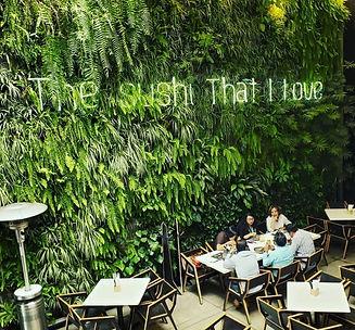 MURO VERDE Ecosistema Vertical Ecoyaab Jardin Vertical Muro Verde Fachada Vegetal Pared con Plantas Vertical Ecoyaab