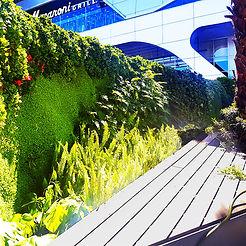 Muro Verde Ecosistema Vertical Ecoyaab Jardin Vertical Fachada Vegetal Pared con Plantas Vertical Ecoyaab Ecosistema Vertical Ecoyaab Jardin Vertical Muro Verde Fachada Vegetal Pared con Plantas Vertical Ecoyaab, Jardines Verticales, Muros Verdes, Fachada Vegetal, México, Distrito Federal, Ecoyaab, Jardín Vertical, Green Wall, Muro Vivo,Azotea Verde, Techo Verde,