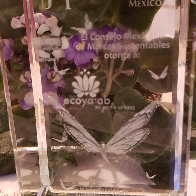 Premio Superbrands